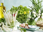 Spring still life with radishes, herbs, lettuce