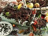 Fresh elderberries and elderberry juice