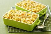 Cheese pasta bake