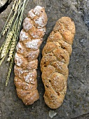 Sesame bread and sunflower bread