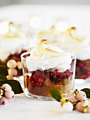 Spiced cake with cranberries, ice cream and meringue (Christmas)