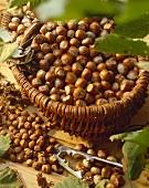 Shelled and unshelled hazelnuts
