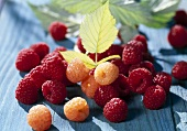 Red and yellow raspberries
