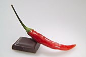 A piece of chocolate with a red chilli