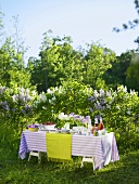 Laid table in front of lilac bushes in garden