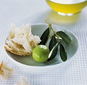Green olives, olive branch, white bread, olive oil in background