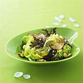 Blattsalat mit gebratener Entenbrust und Orangendressing