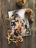 Chestnuts and postcard on wooden background
