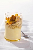 Yoghurt with dried fruit and rolled oats