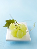 Green grapes on porcelain