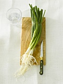Spring onions on wooden board with knife, glass of water