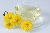Chrysanthemums & chrysanthemum tea (cooling & refreshing)