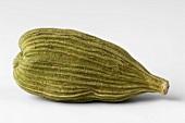 Green cardamom pod