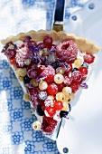 A piece of mixed berry and vanilla cream tart