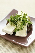 Camembert and cress on pumpernickel
