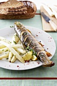 Charr with white asparagus