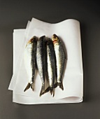 Fresh sardines (for deep-frying)