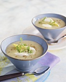 Chicory soup