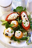 Tomatoes stuffed with soft cheese on salad leaves
