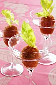 Bloody Mary sorbet with pink champagne