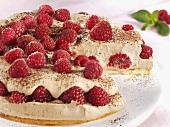 Raspberry cream cake with chocolate cream