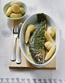 Trout Meuniere with boiled potatoes