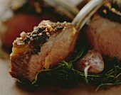 Loin of lamb with nut brittle crust