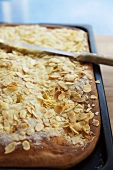 Butter cake topped with flaked almonds