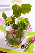 Spring salad with radishes and quail's egg