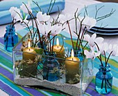 Cyclamen, bilberry twigs and candles in rectangular glass
