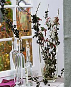 Bottles of sloe gin, sloe branches and heather