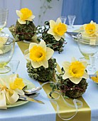 Table decoration of narcissi and moss balls