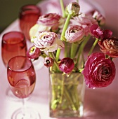 Ranunculus in a vase and red wine glasses