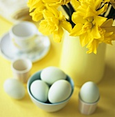 Boiled eggs and vase of daffodils