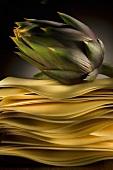Artichoke on lasagne sheets