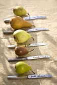 Pears with variety names