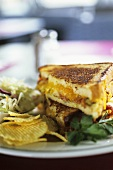 Grilled cheese sandwich, crisps and coleslaw