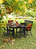 Laid table under a tree (autumn)