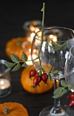 Rose hips on wine glass in front of pumpkins and tealights