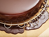 Cake coated in chocolate icing on cake rack (close-up)