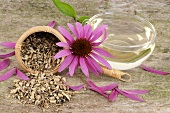 Cup of echinacea tea, dried roots and purple coneflower