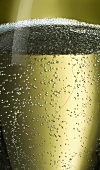 A glass of sparkling wine (detail)