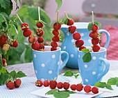 Raspberry skewers in cups