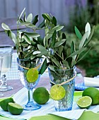 Bunches of olive branches in glasses decorated with lime slices