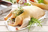Fresh duck with herb stuffing