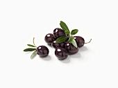 Black olives and olive leaves