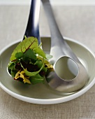 Salad servers with mixed salad leaves