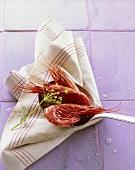 Red prawns on ladle