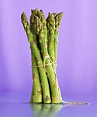 A bundle of green asparagus against a purple background