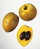 Fruits of Chrysophyllum lanceolatum